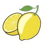 The Versatile Meyer Lemon Tree